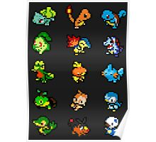 Pixel Starters Poster