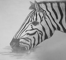Zebra by lukesmith11
