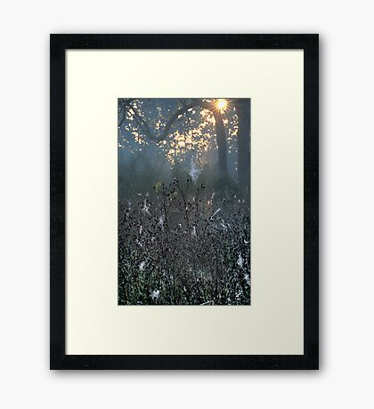 Morning Sunburst Framed Print