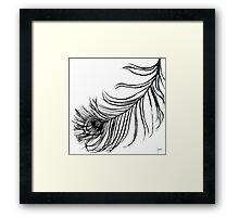 PEACOCK BIRD FEATHER Framed Print