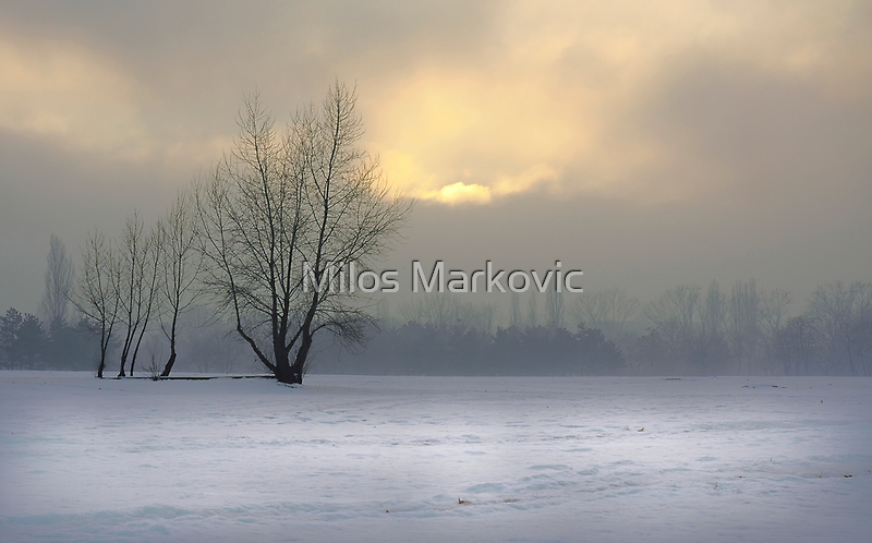 End of the Day by Milos Markovic
