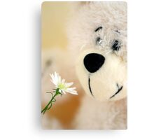 Take time to smell the flowers Canvas Print