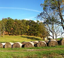 Ohio Hay Rolls in a Row by LeeMascarello