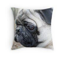 Macro pug Throw Pillow