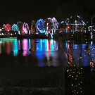 Zoo Lights Reflection Panorama by LeeMascarello