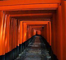 Fushimi Inari Shrine by Skye Hohmann