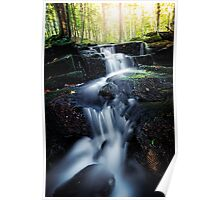 Mountain Stream in September Poster