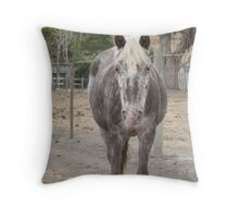 World's Best Palouse Pony Throw Pillow