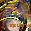 Lucy In The Sky With Diamonds-The Beatles by Rebecca Bryson