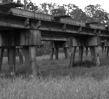 TRAIN TRACKS by Colin Van Der Heide