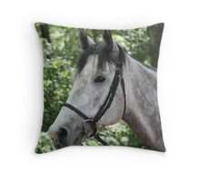 Gray is Beautiful Throw Pillow