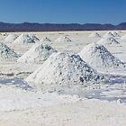 Uyuni salt flat - Bolivia by Mathieu Longvert
