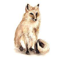Fox by ellaquaint