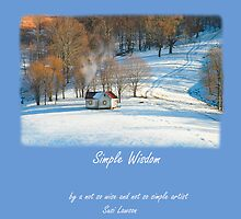 First PLace in the Kodak NexPress Book Award! by susi lawson