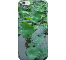 Lily on the Water iPhone Case/Skin