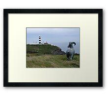 Lighthouse, Near Kinsale Framed Print