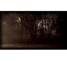 night walk Photographic Print