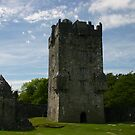 Aughnanure Castle by Martina Fagan