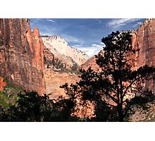 Natural Beauty Photographic Print