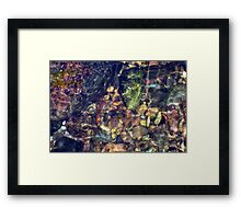 Natures puzzle Framed Print
