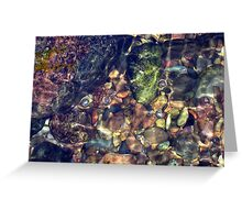 Natures puzzle Greeting Card
