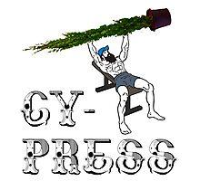 Cy-press Photographic Print