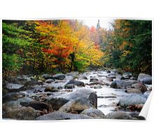 Rocky Creek Autumn Scenic Poster