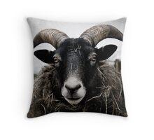 Sheepish hayeater Throw Pillow