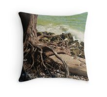 Hang in There! Throw Pillow