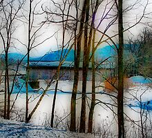 Winter Scene Bridge by Deborah  Benoit