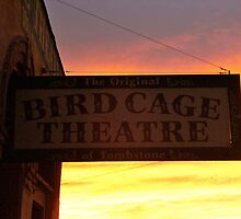 Bird Cage Sunset by musefulmagpie