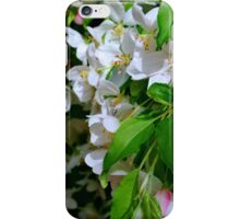 The Blooms ! iPhone Case/Skin
