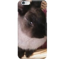 Ruby the Bunny iPhone Case/Skin