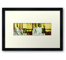 In The Fade Framed Print