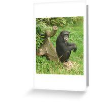 Chimpanzee sticking out tongue Greeting Card