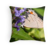 Remembering Warmer Days Throw Pillow