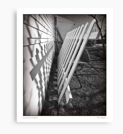 Spare fence   Canvas Print