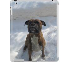 Snow Sitting iPad Case/Skin