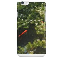 Fish in a small pond iPhone Case/Skin