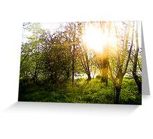 Riverside Wood Greeting Card
