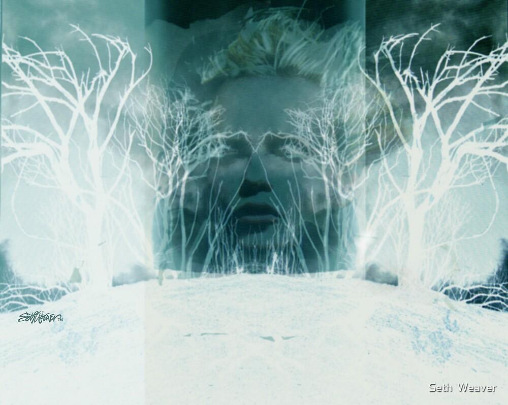 Dance of Winter by Seth  Weaver