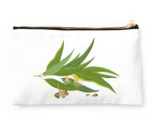Eucalyptus twig with leaves, flowers and seeds Studio Pouch
