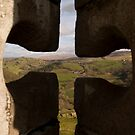 Window on the World by Jonathan Dower
