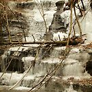 Fallen Tree in the Ice Falls by LeeMascarello