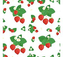 Strawberries with Leaves and Flowers Photographic Print