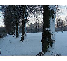 Wintery landscape Photographic Print