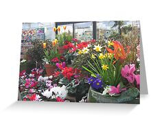 Spring is Here!! Greeting Card