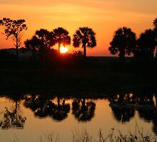 Florida Sunrise by RebeccaBlackman