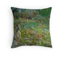 Kangaroo in the Ferns A Throw Pillow