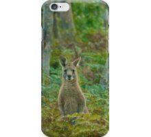 Kangaroo in the ferns B iPhone Case/Skin